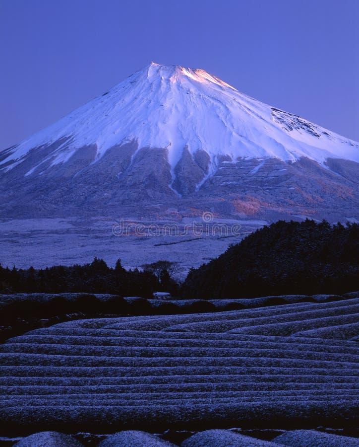 Zet Fuji LVI op royalty-vrije stock foto's