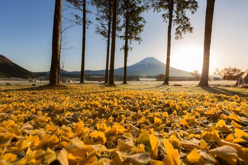 Zet Fuji-zonsopgang op royalty-vrije stock afbeeldingen