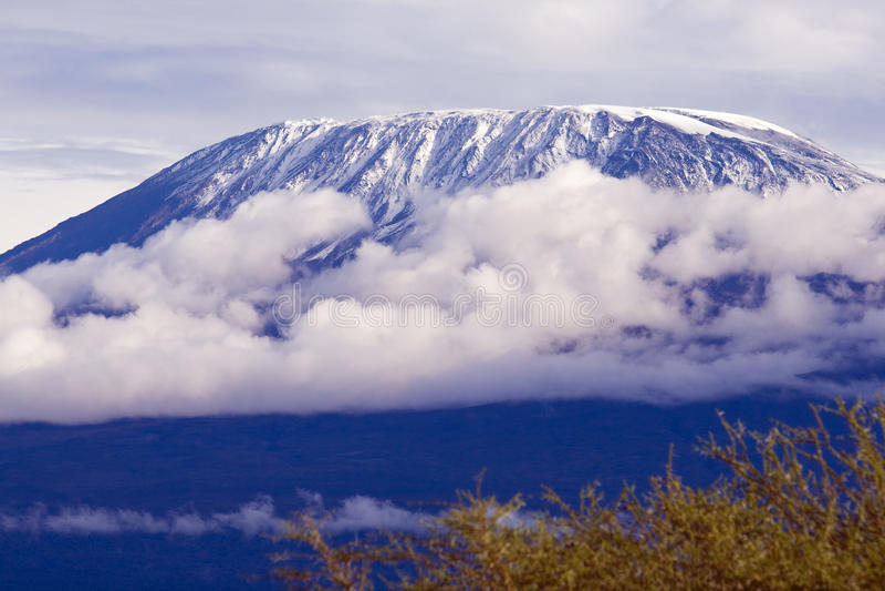 Zet Kilimanjaro op stock afbeeldingen