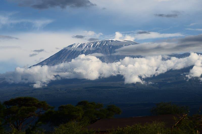 Zet Kilimanjaro op royalty-vrije stock foto's