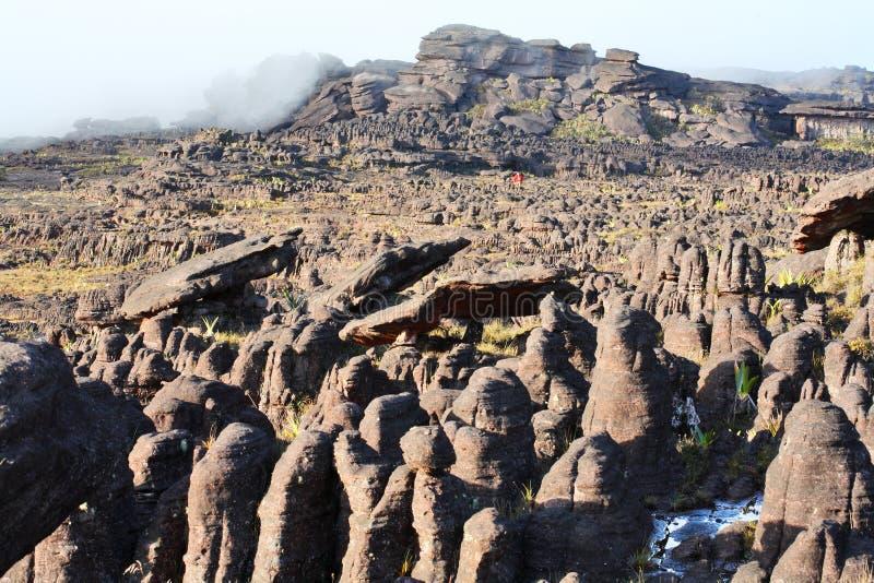 Zet landschap Roraima op royalty-vrije stock fotografie