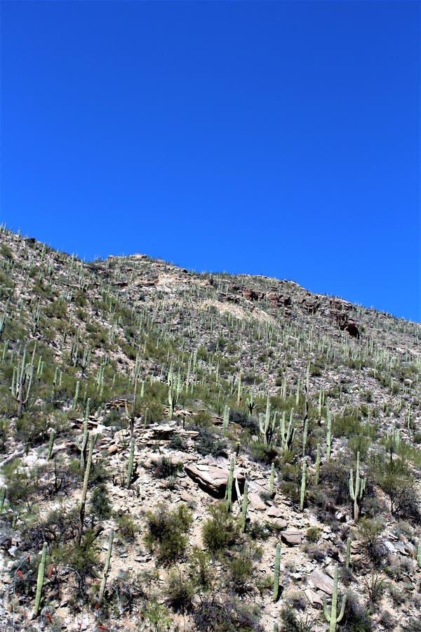 Zet Lemmon, Tucson, Arizona, Verenigde Staten op stock foto