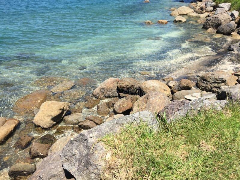 Zet Maunganui op stock foto