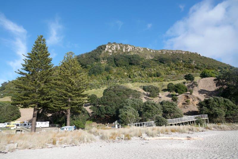 Zet Maunganui in Tauranga, Nieuw Zeeland op royalty-vrije stock foto