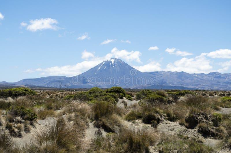 Zet Ngauruhoe Nieuw Zeeland op stock afbeelding