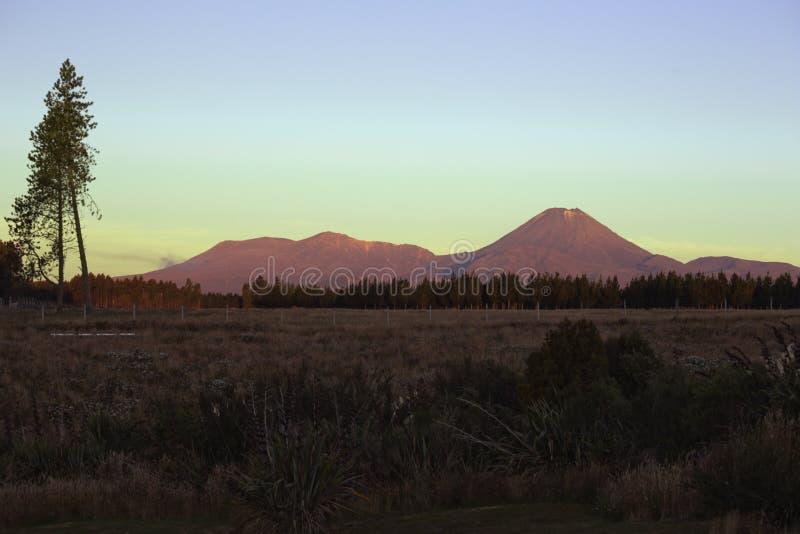 Zet Ngauruhoe op en zet Tongariro bij zonsondergang op stock afbeelding