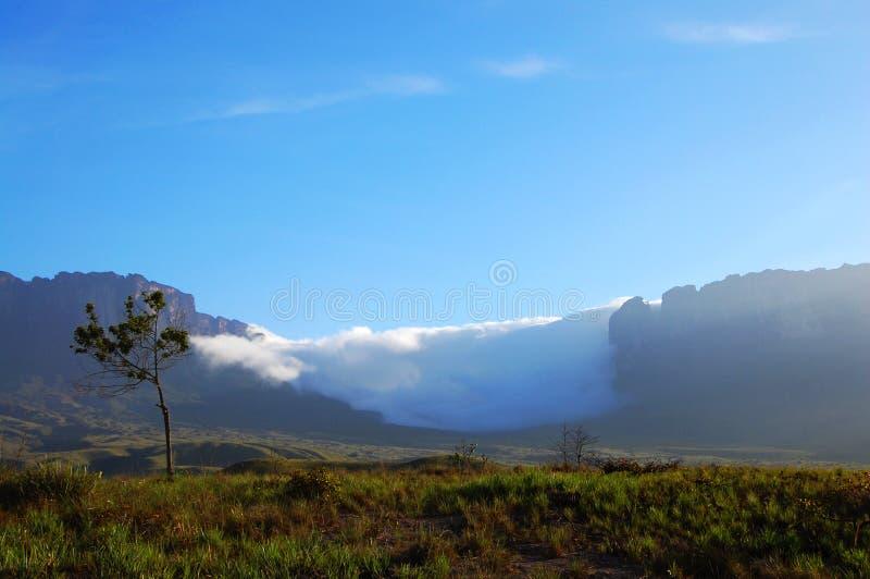 Zet Roraima - Venezuela op stock afbeeldingen