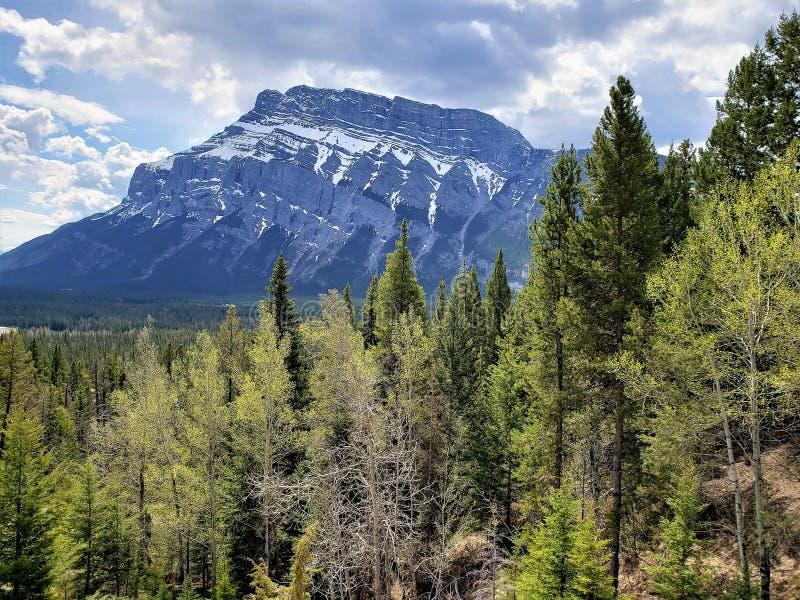 Zet Rundle in Banff Alberta op royalty-vrije stock afbeelding