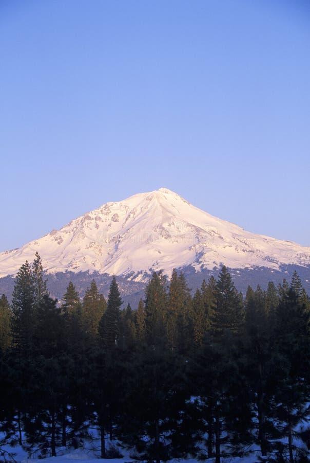 Zet Shasta bij Zonsopgang op royalty-vrije stock fotografie