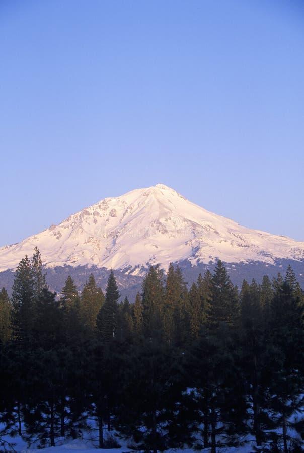Zet Shasta bij Zonsopgang op, Californië royalty-vrije stock afbeelding