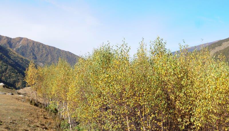 Zet Siguniang in Sichuan, China op royalty-vrije stock foto's