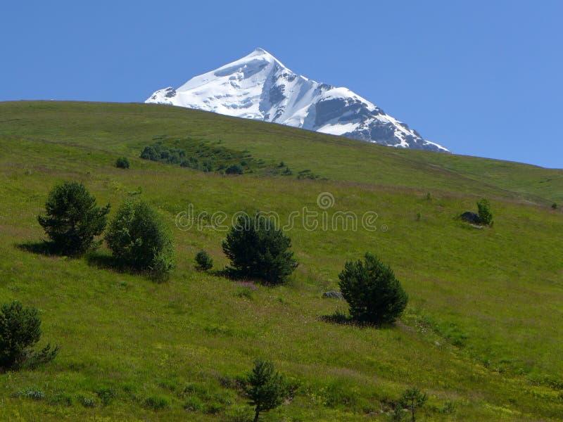 Zet Tetnuldi, de Georgische Kaukasus op royalty-vrije stock afbeeldingen