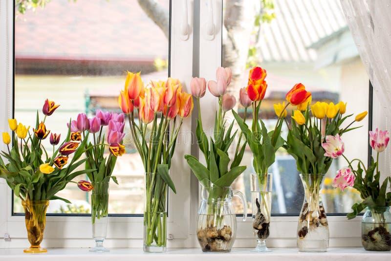 Zeven boeketten van tulpen stock foto