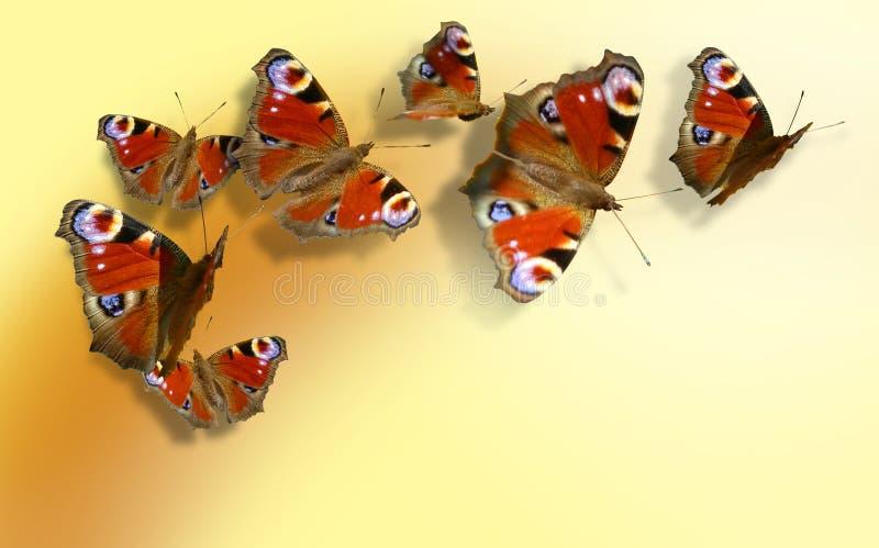 Zeven kleurrijke vlinders op geeloranje achtergrond stock afbeelding