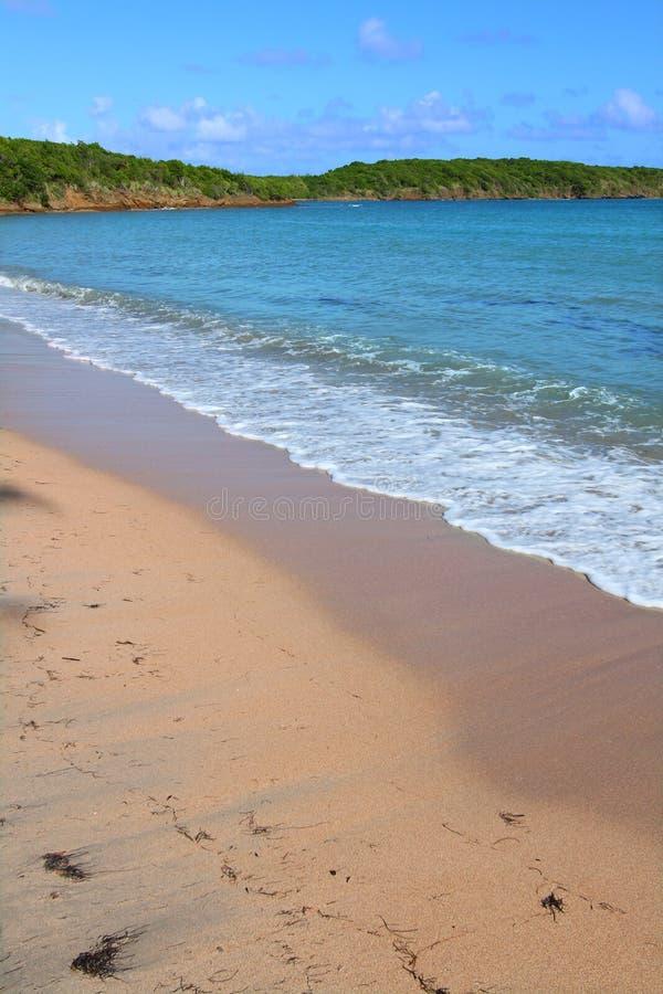 Zeven Overzees Strand Puerto Rico stock afbeeldingen