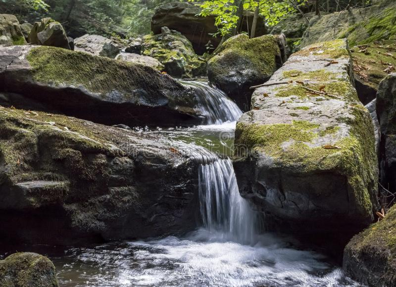 Zeven Tonnenwaterval Rocky Forest Stream stock afbeelding