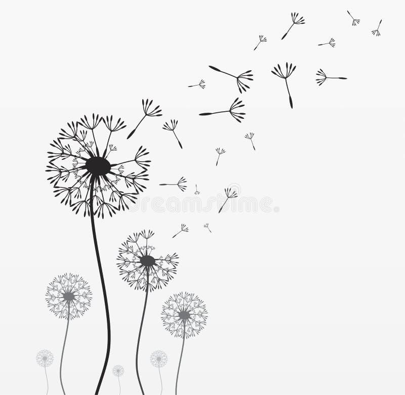 Zeven vectorpaardebloemen vector illustratie