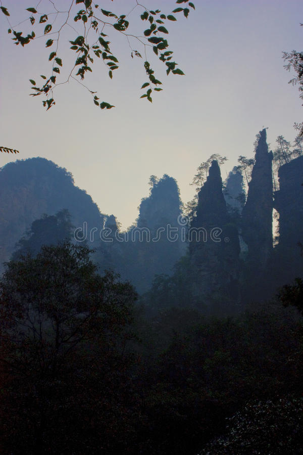 Download Zhangjiajie stock photo. Image of tree, peak, river, forest - 11451508