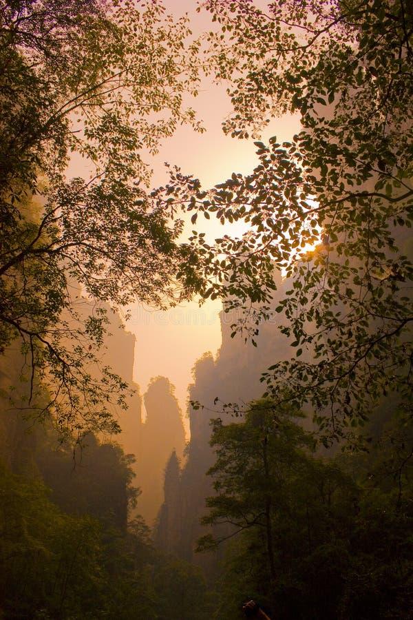 Zhangjiajie stockbild