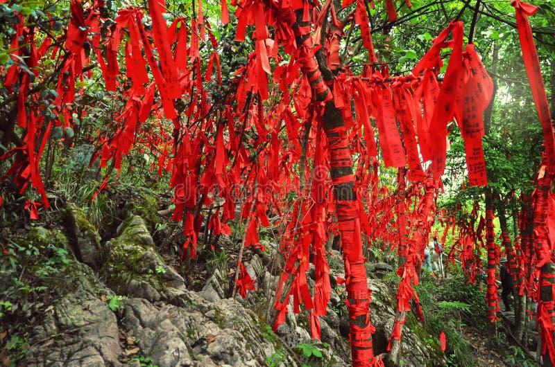 Zhangjiajie Chiny, Maj, - 10, 2017: Szczegół czerwoni faborki w życzenia Zhangjiajie Lasowym parku narodowym, Chiny obraz royalty free