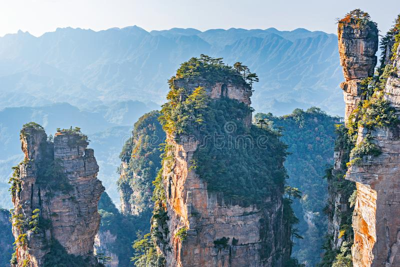Zhangjiajie Forest Park images stock