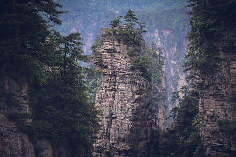 Zhangjiajie Forest Park nacional, China fotografia de stock royalty free