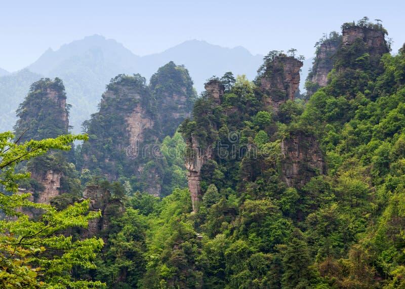 Zhangjiajie Forest Park national dans la province de Hunan, Chine image libre de droits