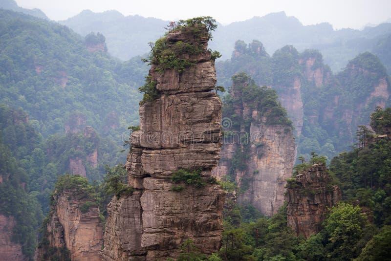 Zhangjiajie Forest Park nazionale, Cina immagini stock