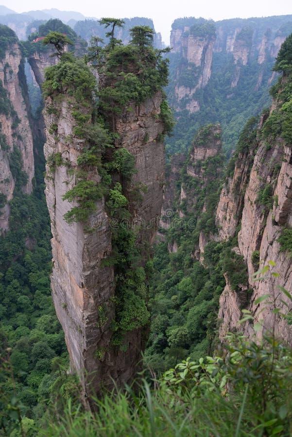 Zhangjiajie Forest Park nazionale, Cina immagine stock libera da diritti
