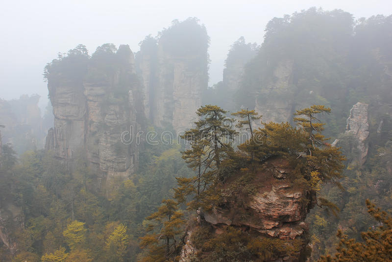 Zhangjiajie Kina, Asien arkivfoto