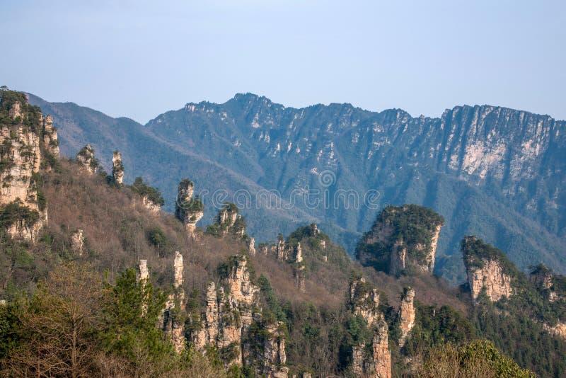 Zhangjiajie lasu państwowego park w Hunan Tianzishan Ogólny Rockowy Qunfeng obrazy stock