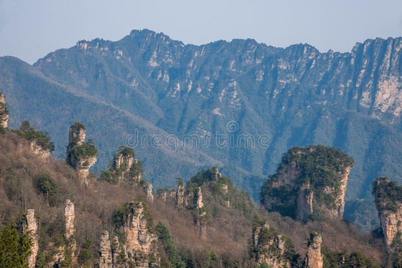 Zhangjiajie lasu państwowego park w Hunan Tianzishan Ogólny Rockowy Qunfeng fotografia stock