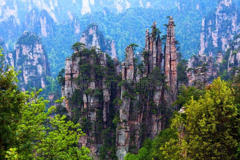 Zhangjiajie lasu państwowego park w prowincja hunan, Chiny obraz royalty free