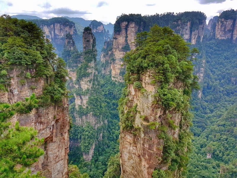 Zhangjiajie medborgare Forest Park - Avatarhallelujaberg royaltyfri fotografi