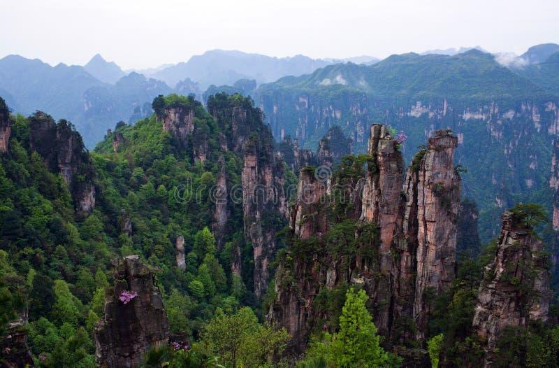 Zhangjiajie medborgare Forest Park i det Hunan landskapet, Kina royaltyfri bild