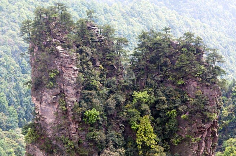 Zhangjiajie medborgare Forest Park i Hunan, Kina royaltyfri foto