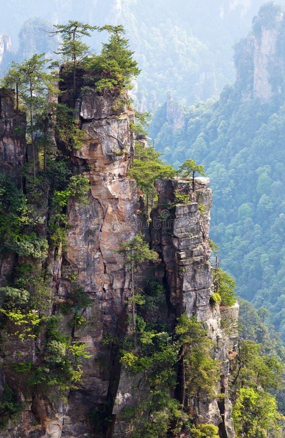 Zhangjiajie medborgare Forest Park i Hunan, Kina royaltyfri bild