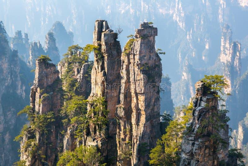 Zhangjiajie nationales Forest Park China stockbilder
