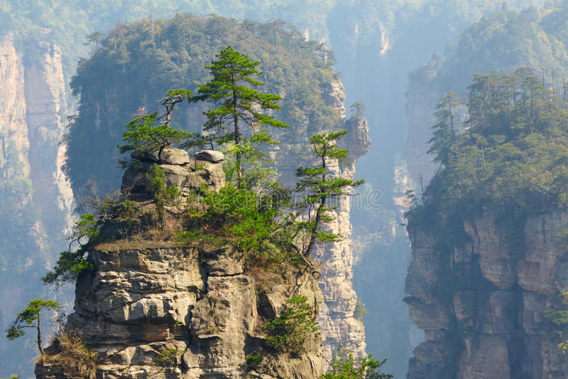Zhangjiajie nationalpark, Kina. arkivbild