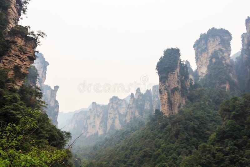 Zhangjiajie nationalpark (tian zhishan) (reserv för Tianzi bergnatur) och dimma, Kina royaltyfria foton