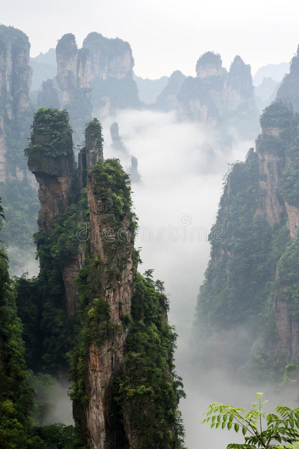 Zhangjiajie Wulingyuan. Scenic Area has the world`s rare quartz sandstone peaks forest canyon, the first national forest park in China - Zhangjiajie National royalty free stock photos