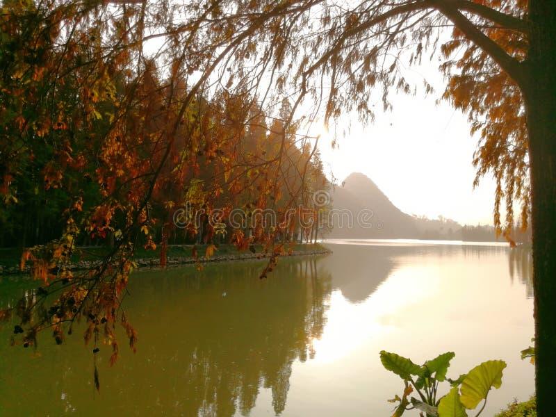 Zhaoqing guangdong, Kina royaltyfria bilder