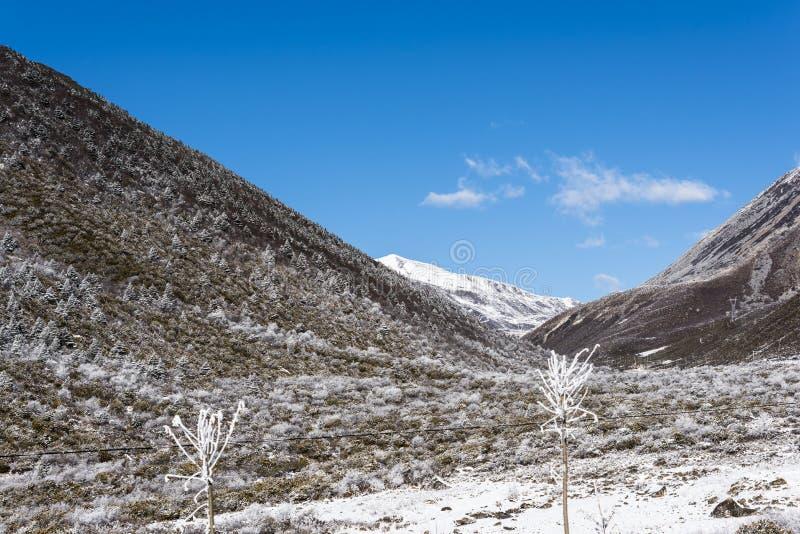 Zheduo góry sceneria obraz royalty free
