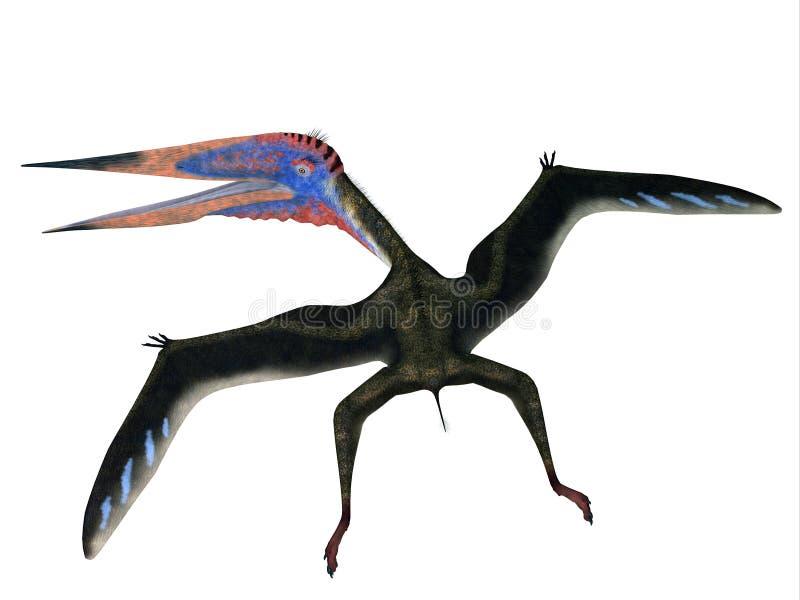 Zhejiangopterus que vuela Pterosaur ilustración del vector
