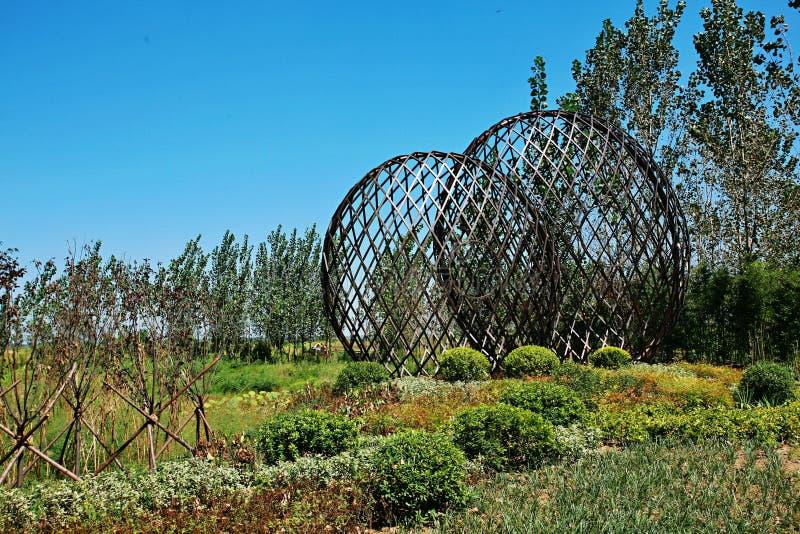 Zhengzhou Żółty Rzeczny bagna park zdjęcia stock
