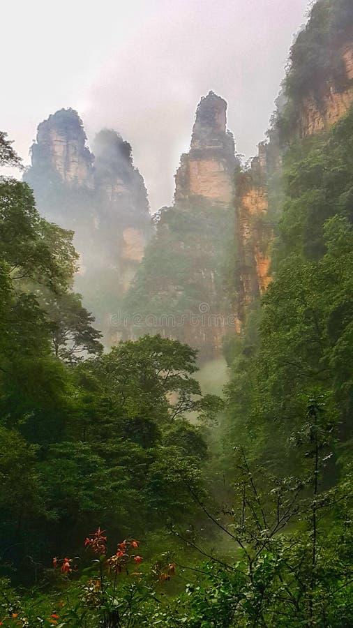 Zhiangjiajie Kina arkivfoto