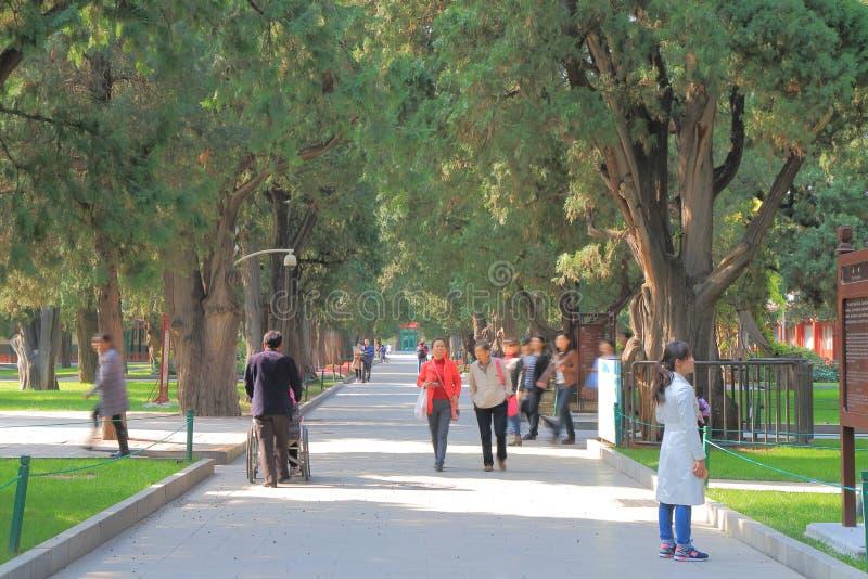 Zhongshan Park Beijing China. People visit Zhongshan Park in Beijing China stock images