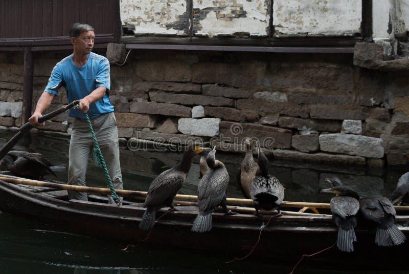ZHOUZHUANG, CHINA: Roerganger die de boot drijven die door kanalen overgaan royalty-vrije stock afbeeldingen