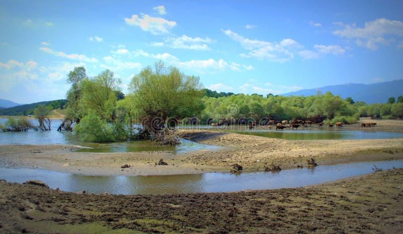 Zhrebchevo jeziorny widok, Bułgaria zdjęcia royalty free