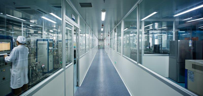 Läkare i laboratorium arkivfoto